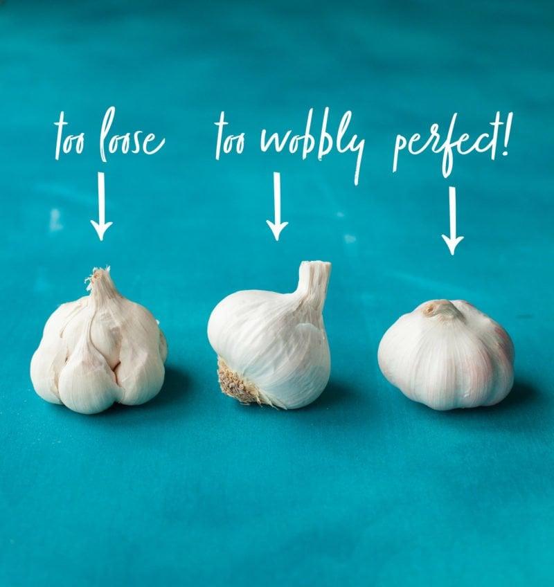 How to Make Roasted Garlic - Good Garlic