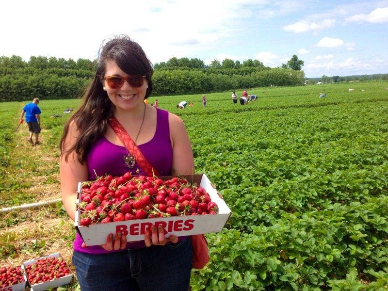 me strawberries hubers