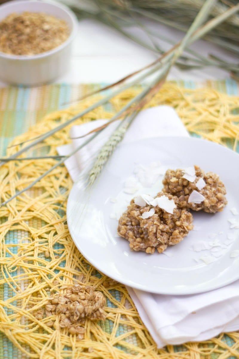 Coconut Granola No-Bake Cookies