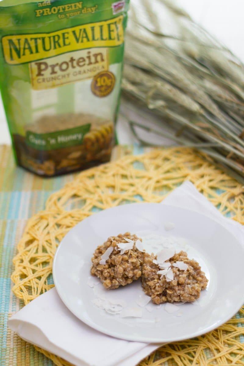 Coconut Granola No Bake Cookies