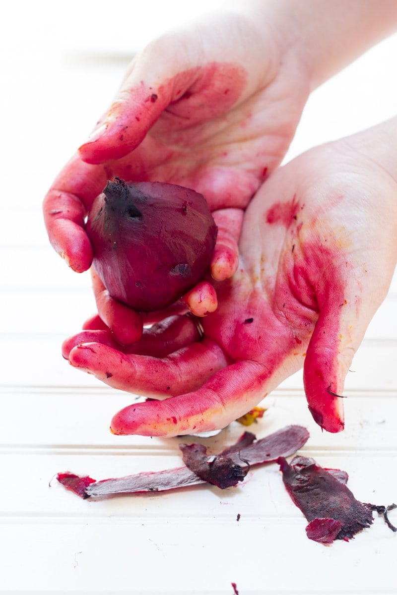 Hands peeling a cooked red beet. The skin is stained red.
