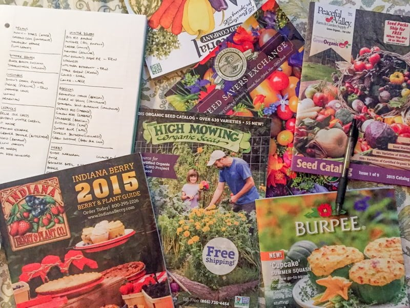 Seed Catalogs
