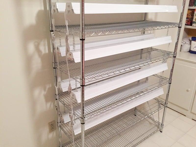 Seed Starting Shelf