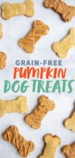 "Grain-Free Pumpkin Coconut Dog Treats on a white background, with the text ""Grain-Free Pumpkin Dog Treats"""
