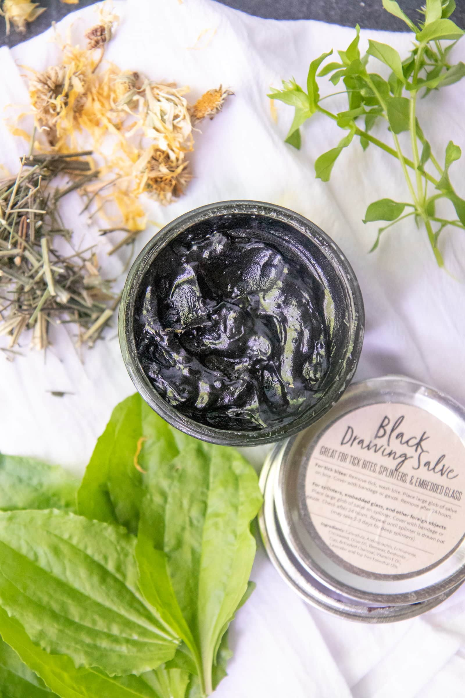 An open glass jar of black drawing salve with herbs surrounding it, and a labeled lid next to it.