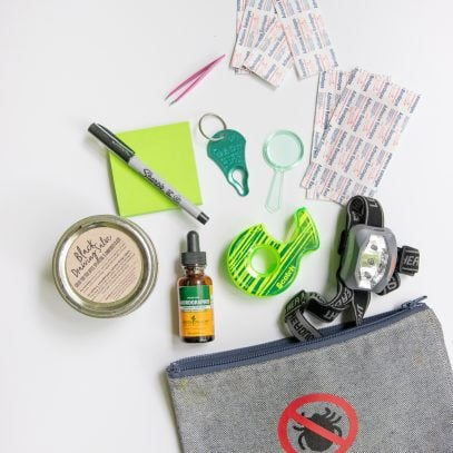"Grey pouch containing a tick kit and labeled with a ""no ticks"" sign, with bandages, a tick key, sticky notes, tape, drawing salve, and more spilling out of it."