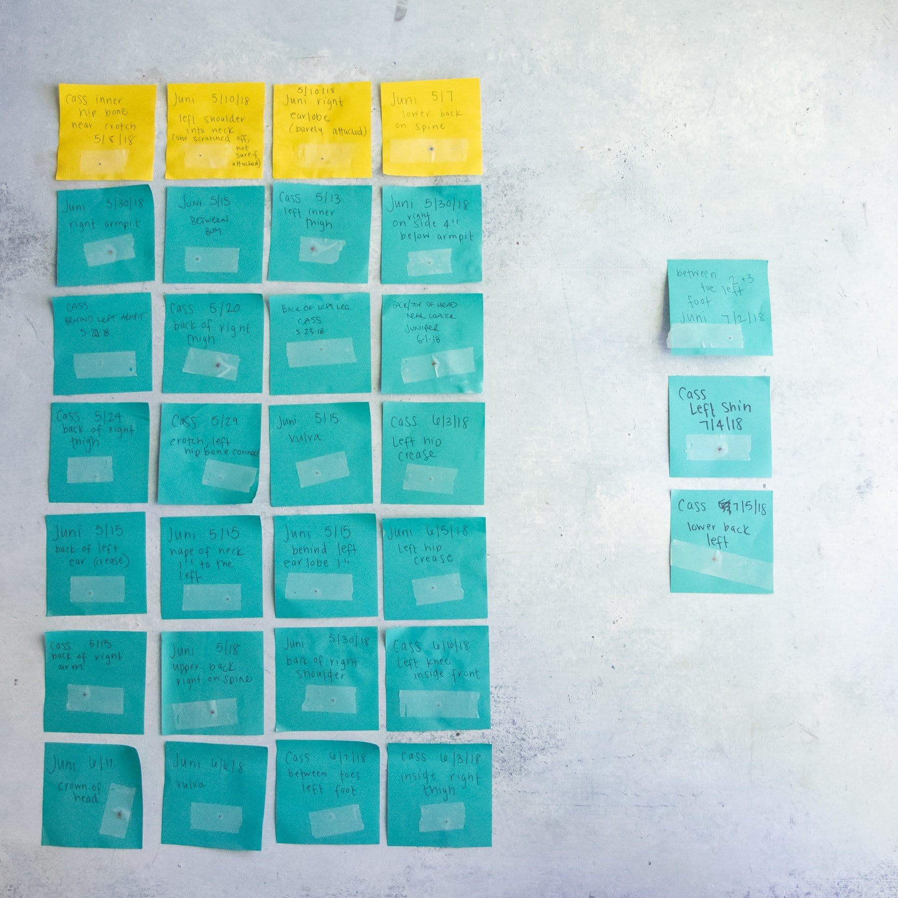 Yellow and teal Post-Its on a wall, labeled with dates and names of tick bites
