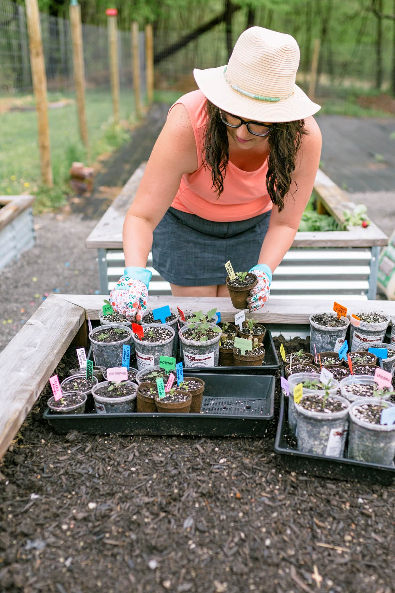 Woman leaning over trays of seedlings set into a raised bed.