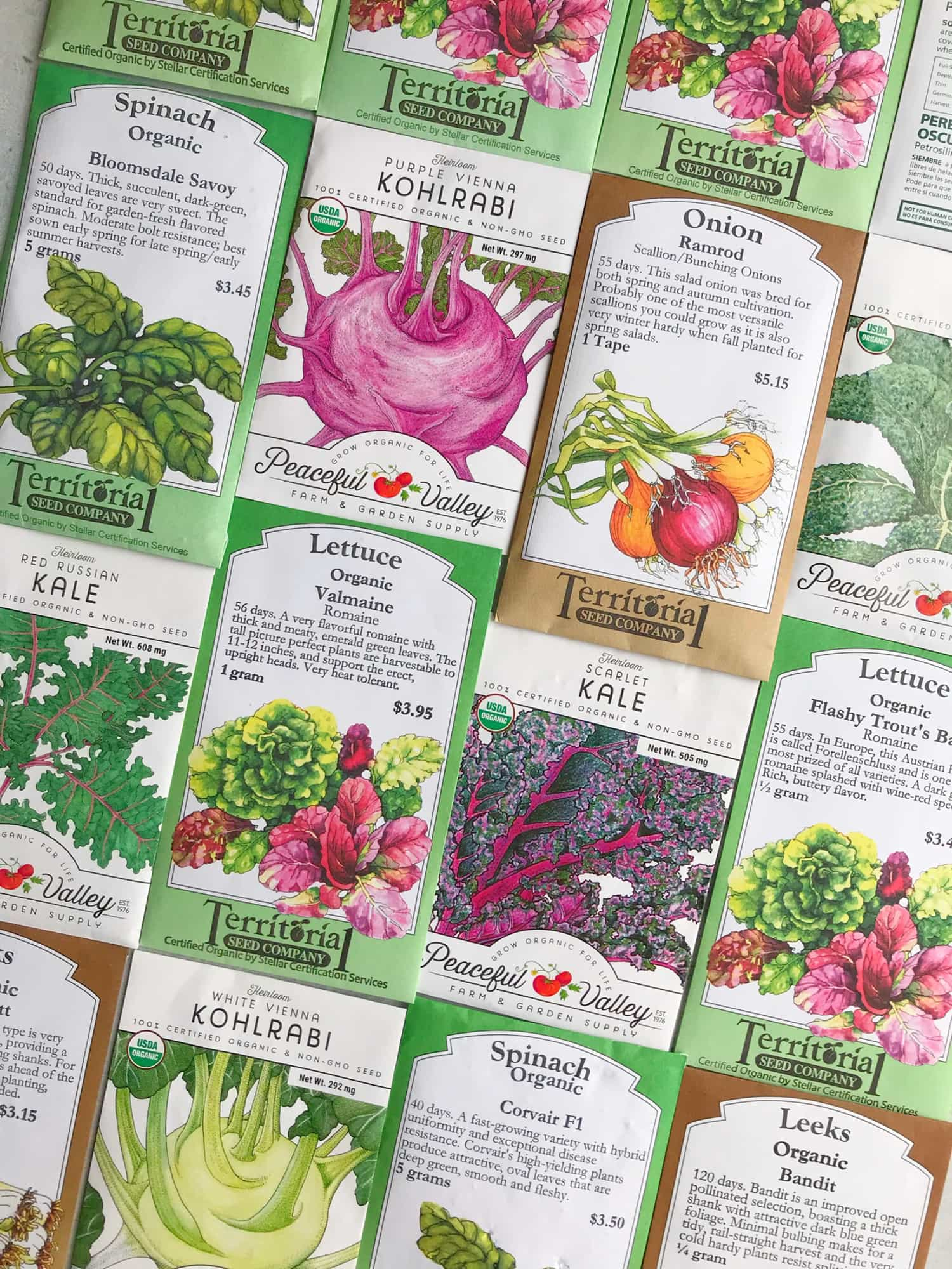 Grid of seed packets laid out for a guide to organic vegetable gardening for beginners